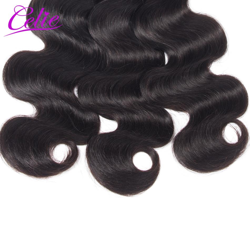 HTB1JL ceQfb uJjSsrbq6z6bVXa8 Celie Hair Body Wave Bundles With Closure Brazilian Hair Weave 3 Bundles With Lace Closure Remy Human Hair Bundles With Closure