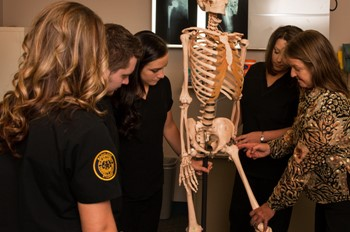 Students and instructor working with a human skeleton.