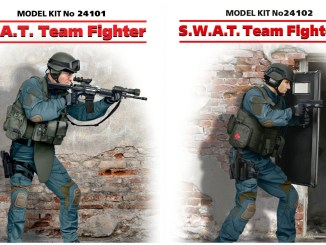 ICM_SWAT