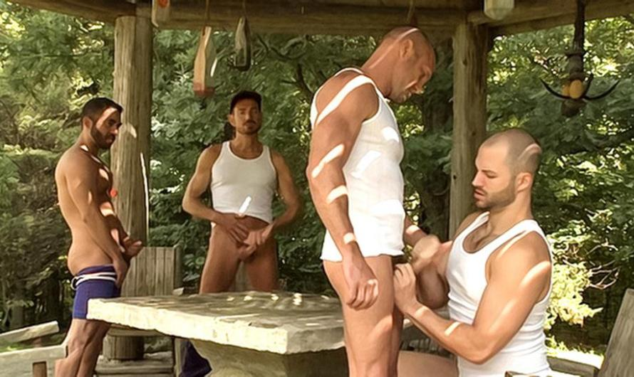 DaddySexFiles – Jack Off Party In The Park – Bryan Slater, Chad Brock, Mike Dreyden, David Chase