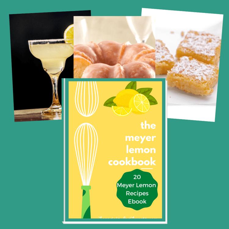 All of your favorite Meyer Lemon Recipes plus Nine new ones!