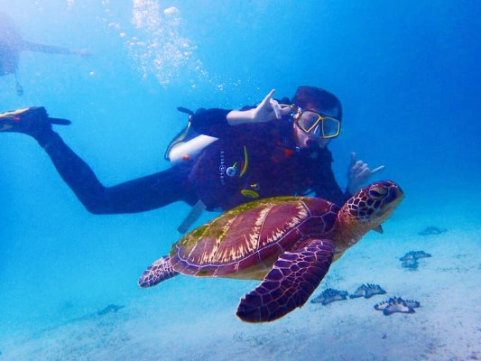 school college university scuba diving trips in puerto galera