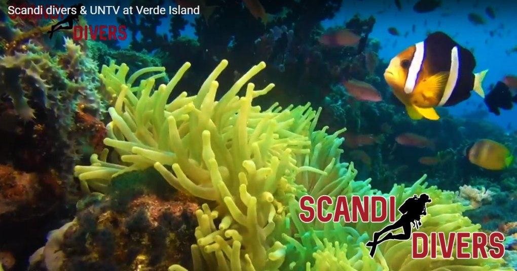 untv verde island scandi divers resort