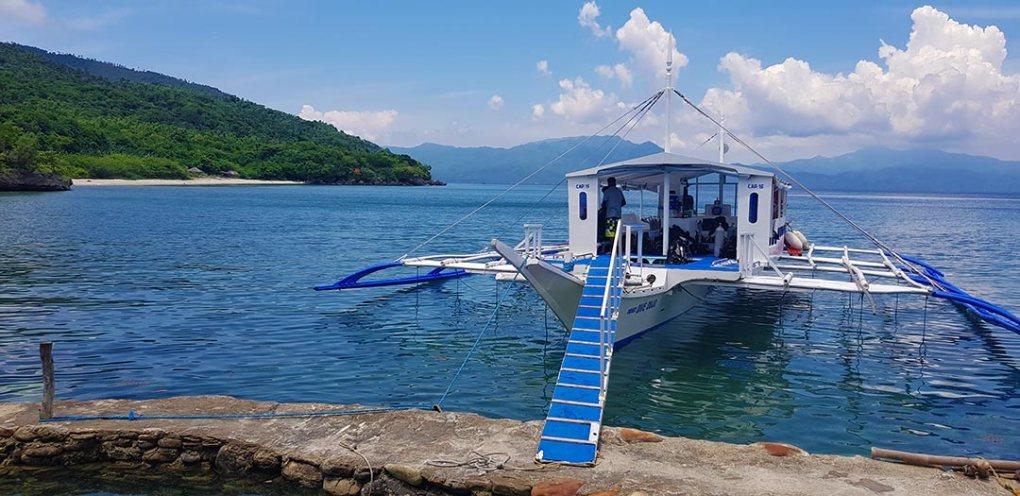 scuba diving verde island philippines