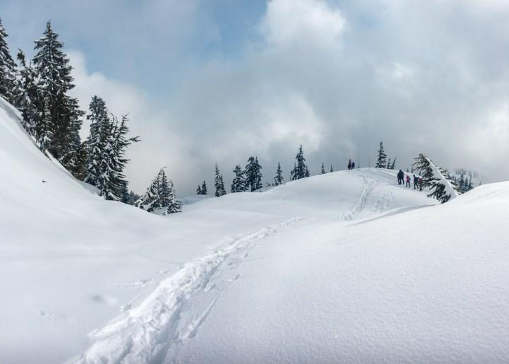 Mt. Seymour3