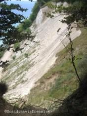 Mon cliffs from the coastal path