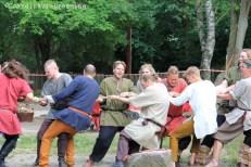 Rope pulling game Viking games 2014 Frederikssund Denmark working hard