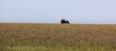 Moto dans les champs