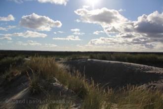 Du haut de la dune voyageuse