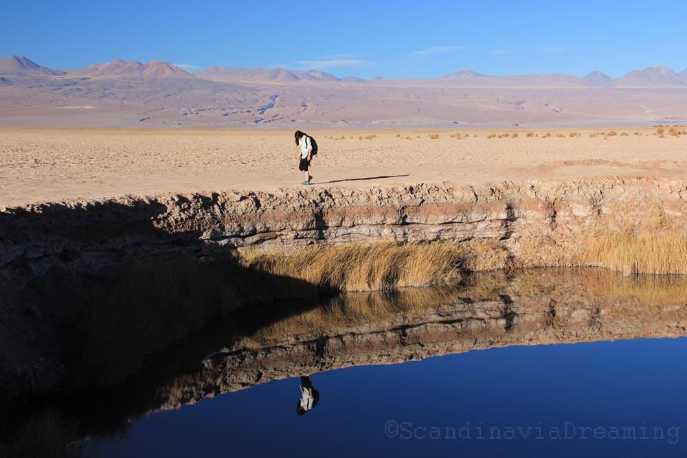 Marchant dans le désert d'Atacama