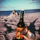 Amager strand -L'apéro à la plage