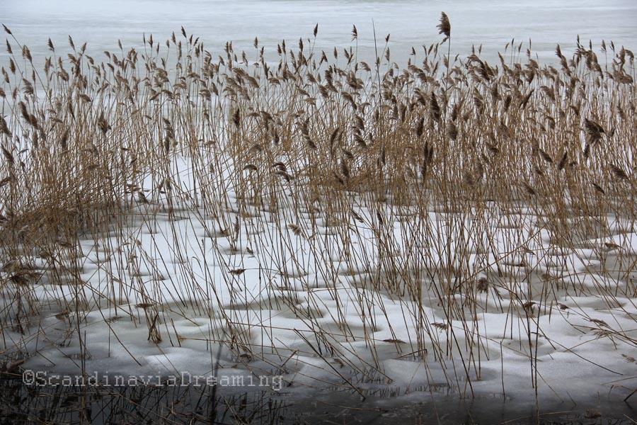 Lac de Tölöö à Helsinki