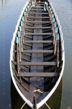 Aviron viking