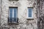 Fenêtres de Paris