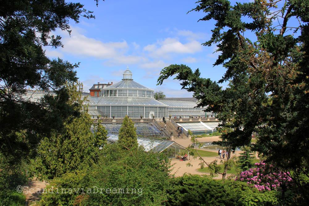 Grande serre du jardin botanique de Copenhague vue de la rocaille