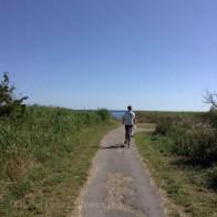 Tour de l'île d'Amager à vélo