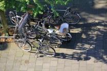 Vélos de Münster