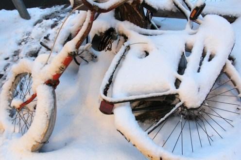 Vélo et neige
