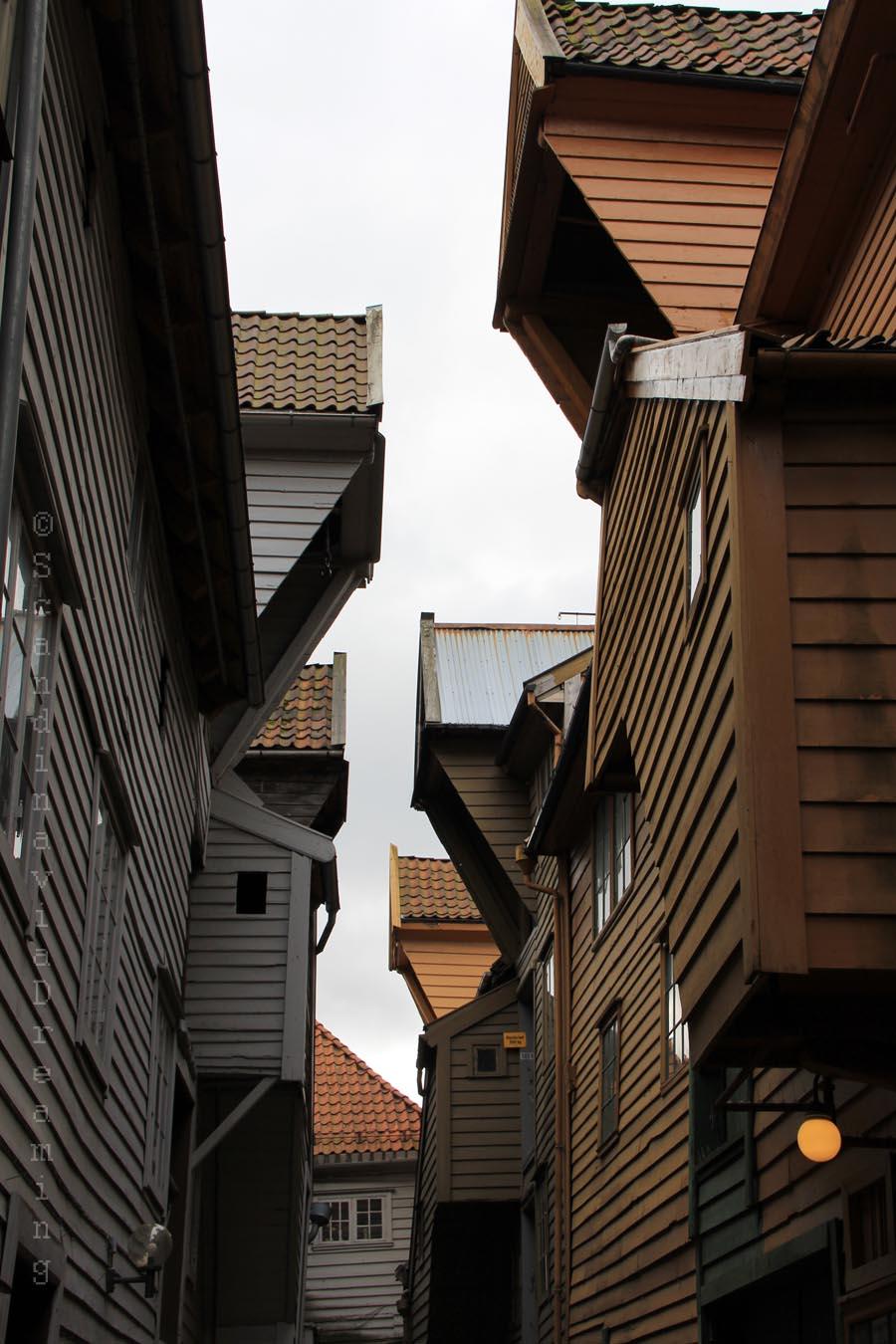 Bergen ancien