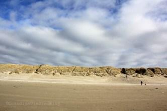 Les dunes de Vejers