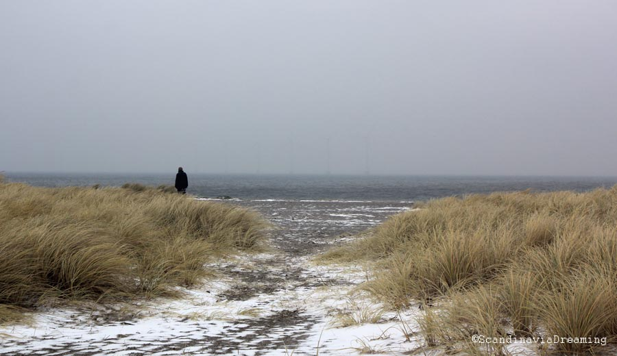 Dunes sous la neige
