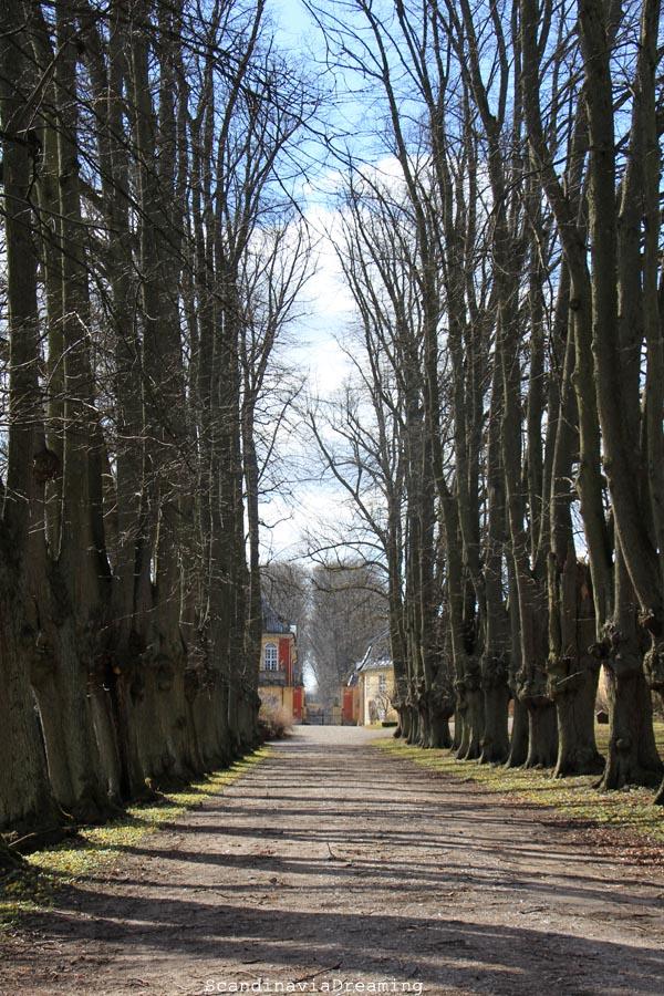 Allée du Château