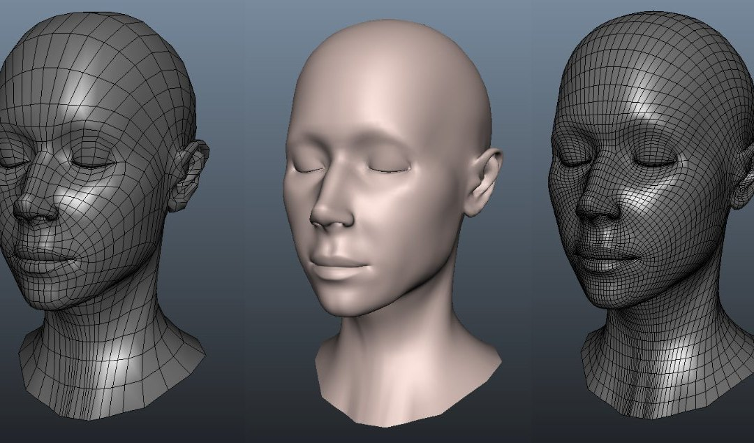 Human Body Topology: How to Model a 3D Human