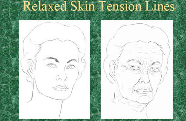 relaxed skin tension lines on realistic 3d face