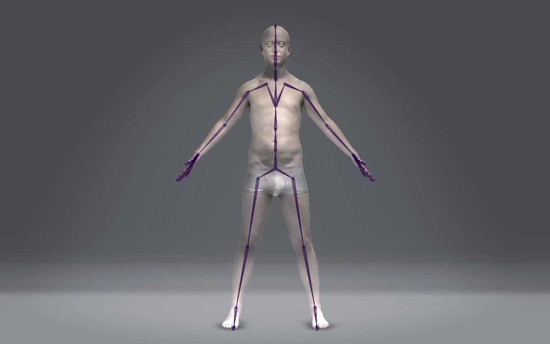 Digital Double Anatomy