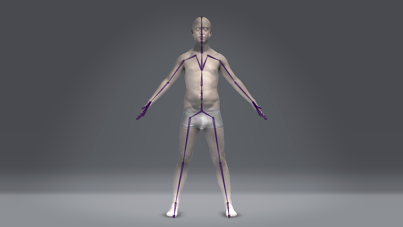 Digital Double Anatomy