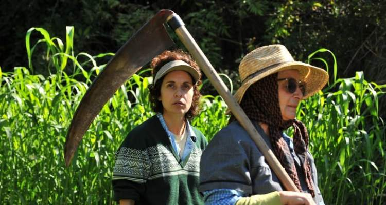Instituto Cervantes Dublin brings free screening of Spanish comedy Born to Suffer on June 19th - Pearse Street Library