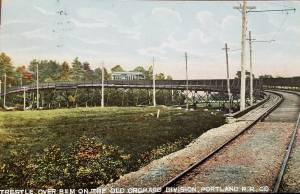 "Image of the Portland Railroad's Letter ""S"" Trestle on the road to Old Orchard Beach circa 1903"