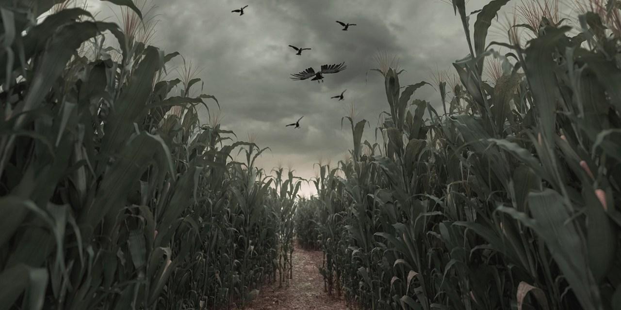 Freaky Farm Night geannuleerd