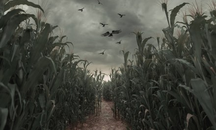 What happend on the farm?! Freaky Farm Night x Scare Me