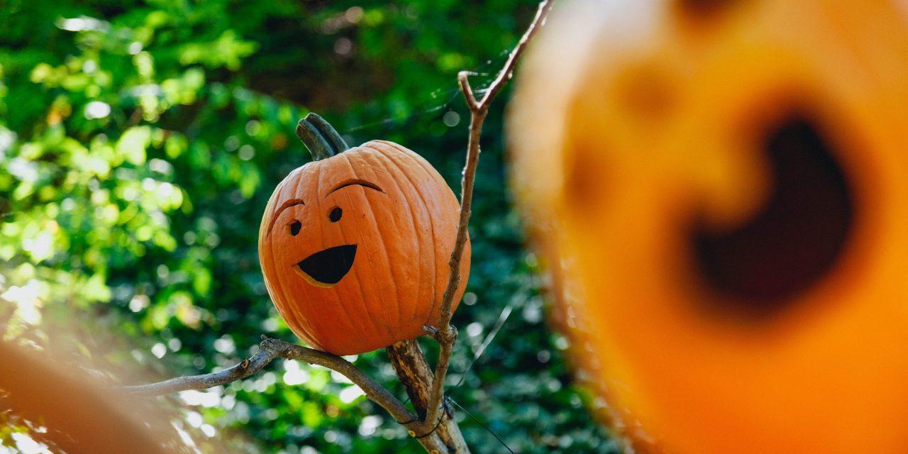 Eigen Huis & Tuin zoekt Halloweenliefhebbers
