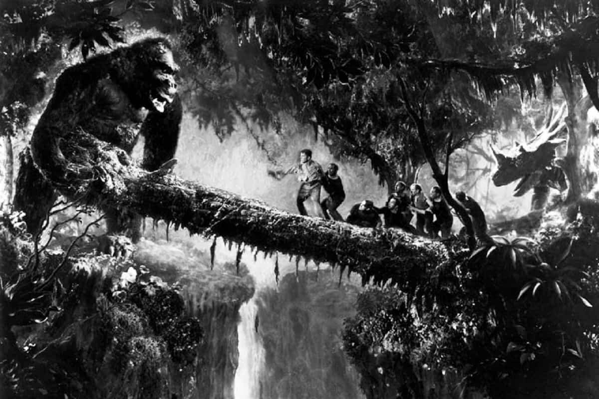 Kong with log