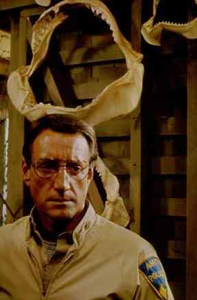 Roy Scheider as good Dad Marlin Brody in Jaws.
