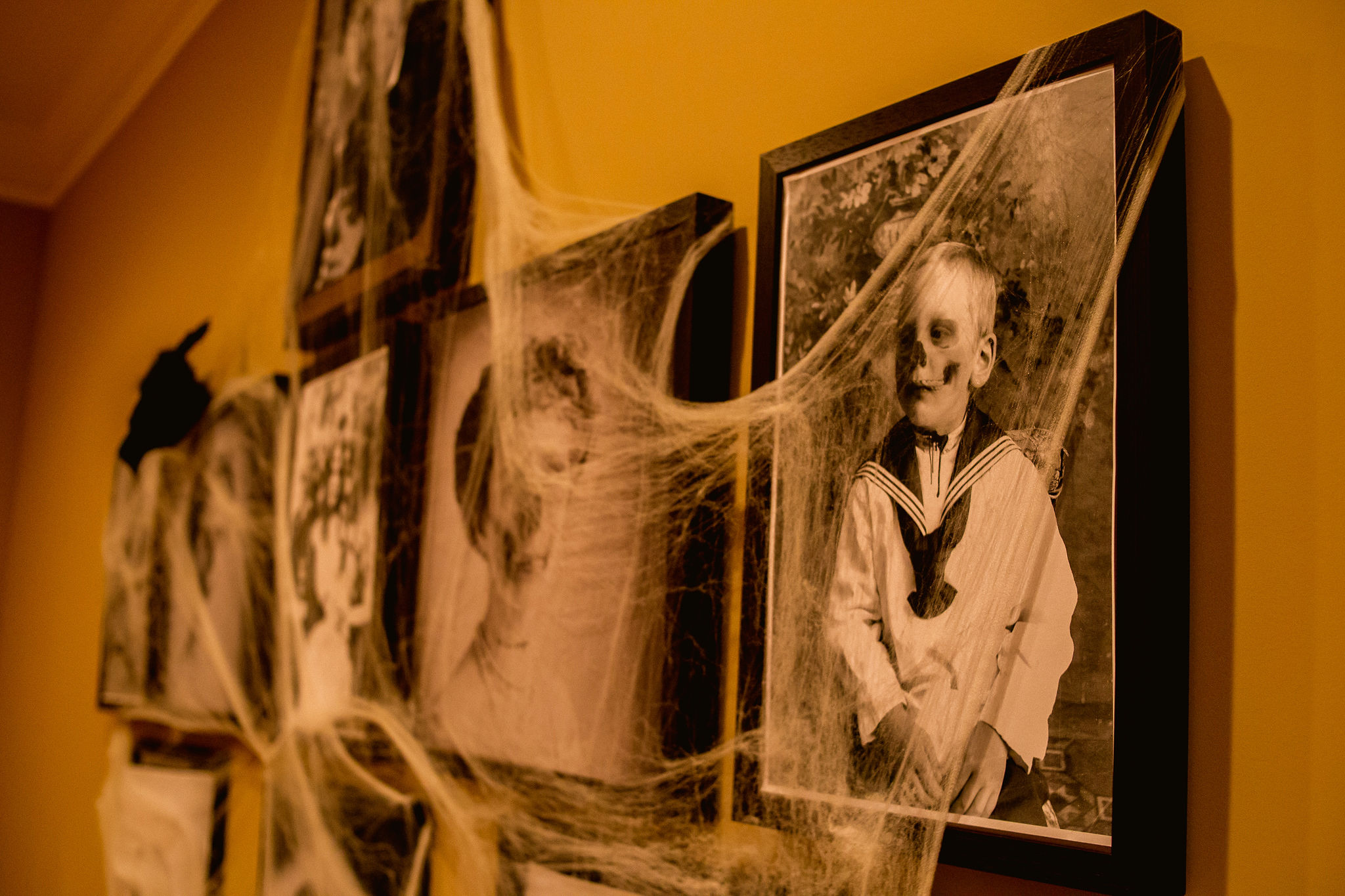 close up image of creepy Halloween party portrait wall with spider webs