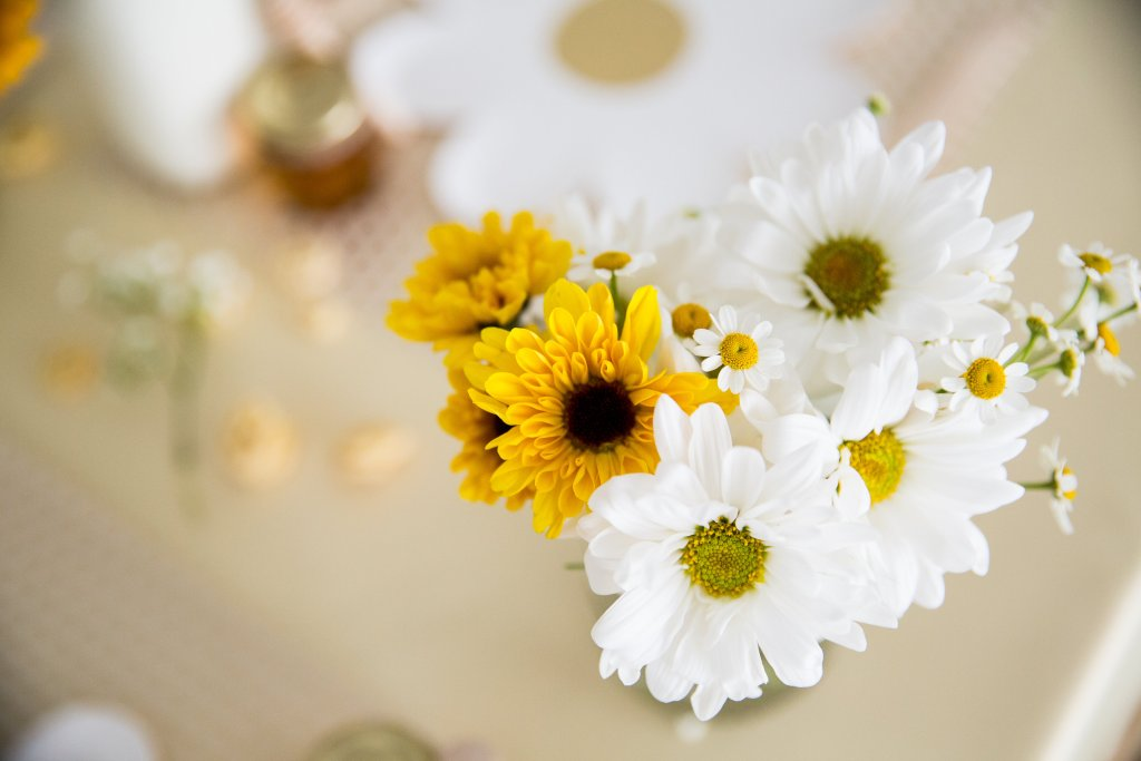 daisies, black-eyed susans, honey bee party