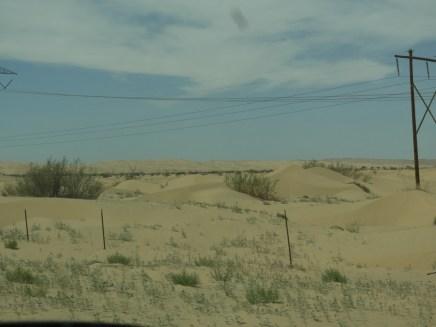 Sand dunes in the Sonoran desert