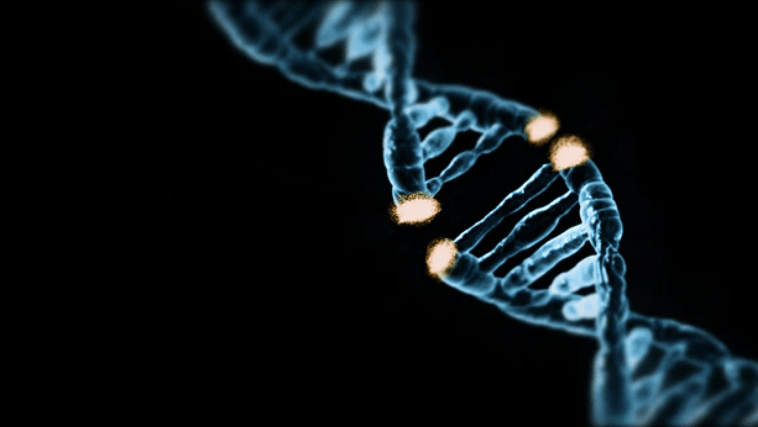 A blue DNA molecule that is broken in half, like it has been cut with a pair of scissors