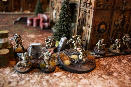 Veterans are deployed in position to give supporting fire with plasmaguns and missile launchers to supress the enemy before the Aerial assault begins!