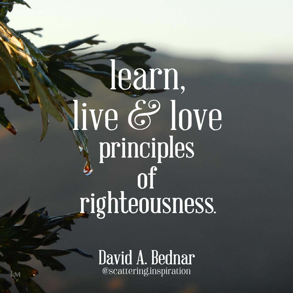 learn live love