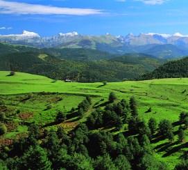 1 Pirineos