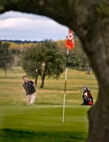 Golf OCIO