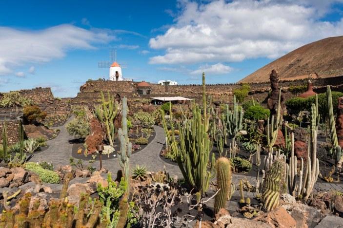 SCB Spain Convention Bureau. Lanzarote. Jardín de Cactus