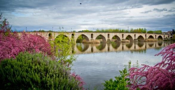 Puente Románico de Zamora