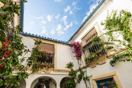 Cordoba Spain - May 20 2014: Typical inner court in Cordoba Andalusia Spain. Patio of Cordoba declared Intangible Heritage of Humanity declared by UNESCO in 12-06-2012.