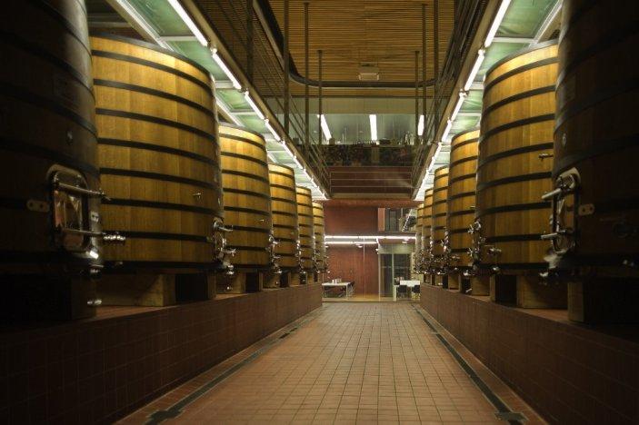 Pago Carraovejas tinas roble fermentacion alcoholica