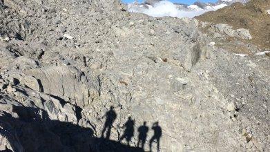 Des marcheurs dans les Alpes françaises. Crédit : Pixabay